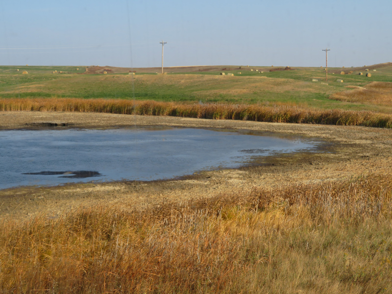 Surface water on livestock pasture in Burke County, North Dakota as of September 2020, showing the impacts of drought in the region.