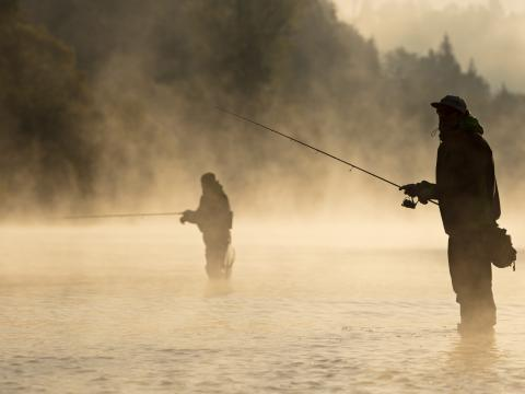 Decorative image. Two people fly fishing.